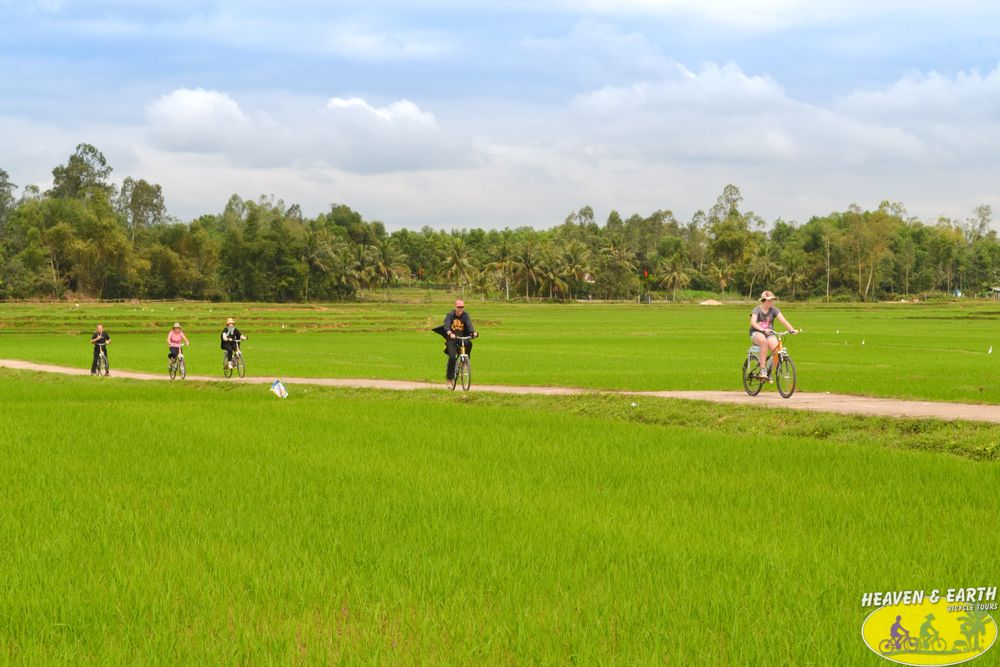 RIDE IN THE MIDDLE OF THE RICE FIELD